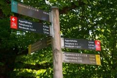 Bergischer-Panoramasteig-–-Etappe-1-1-von-21