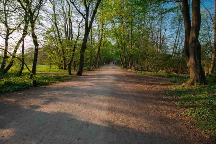 Vorgebirgspark Südfriedhof